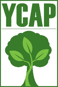 Hybrid Club Meeting: YCAP with Exec. Director Amber Hansen-Moore @ Zoom or Chehalem Cultural Center